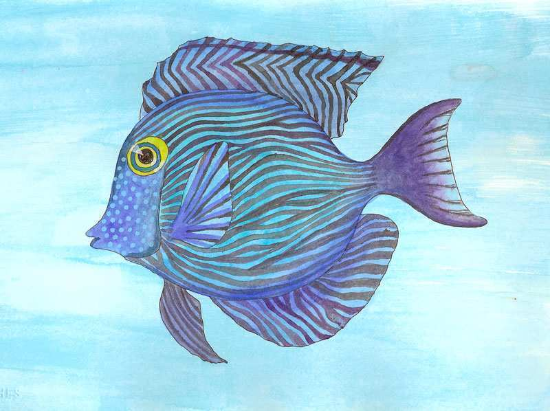 800x598 Fish Painting New Tropical Fish Paintings Painting Ideas