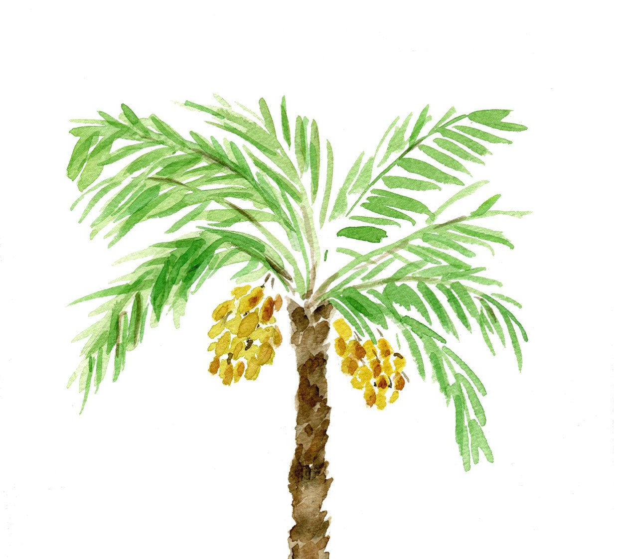1240x1122 Painting Palm Trees In Watercolor Painting Palm Trees In