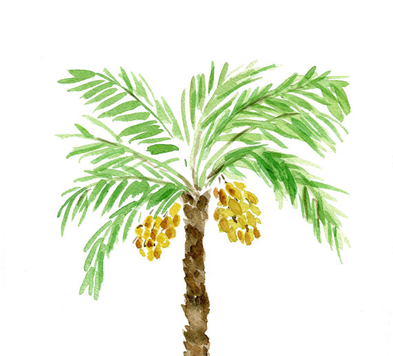 570x516 Palm Tree Art Print, Palm Tree Watercolor Print, Green, Brown