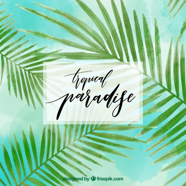 626x626 Tropical Background With Watercolor Palm Leaves Vector Free Download