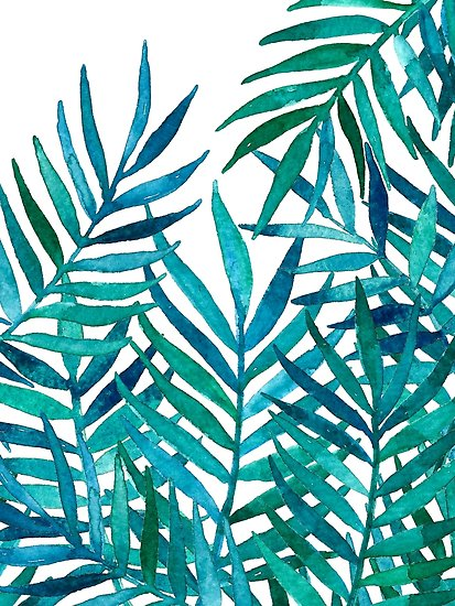 413x550 Watercolor Palm Leaves On White Posters By Micklyn Redbubble