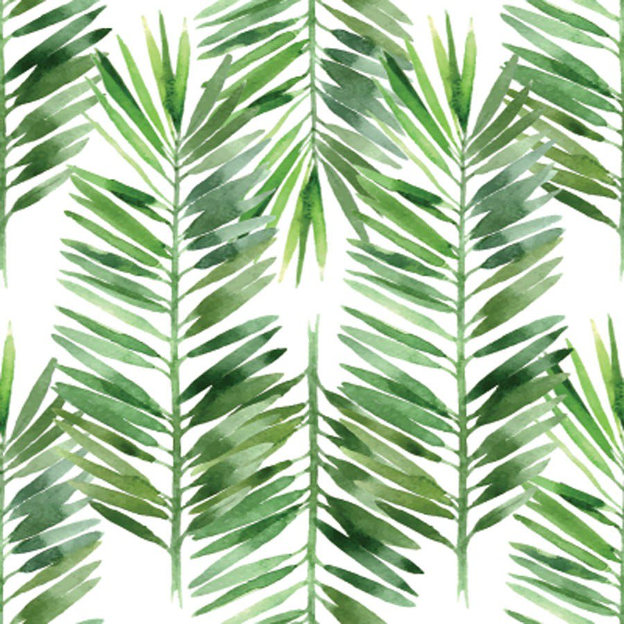 900x900 Watercolor Palm Tree Leaf Pattern Mural Murals Your Way