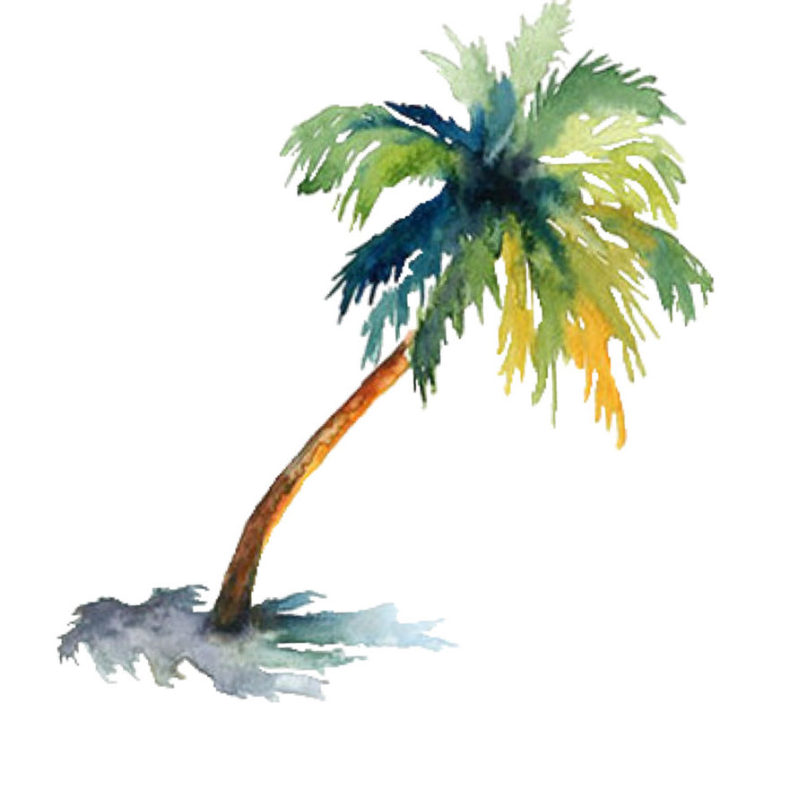 900x900 Painting Palm Trees In Watercolor Watercolor Painting Arecaceae