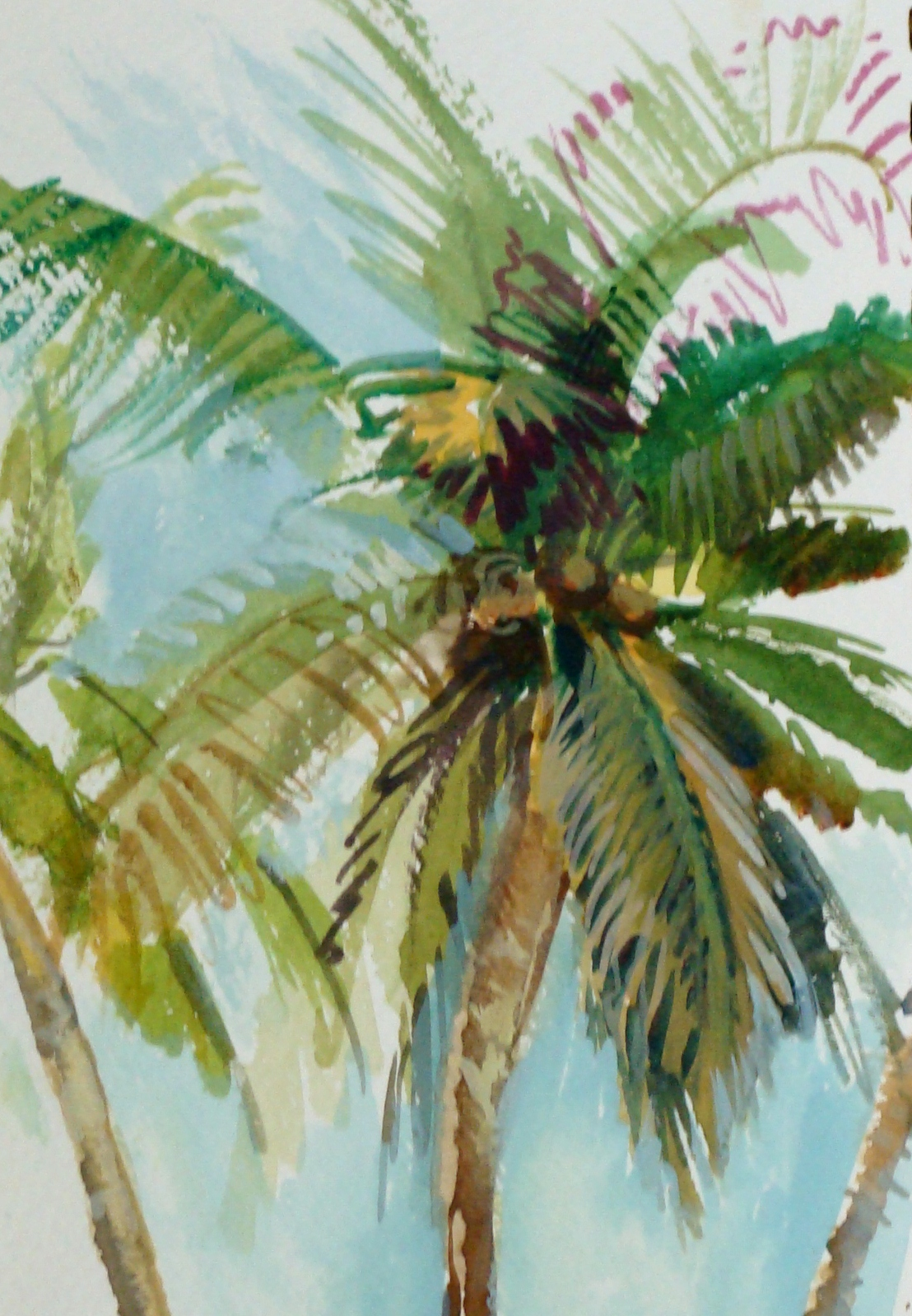 1108x1598 Lesson On How To Draw A Palm Tree, Lillian Kennedy, Watercolor And