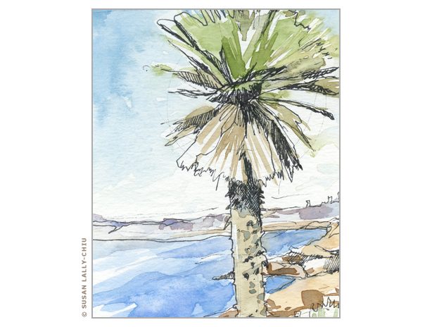 614x464 La Jolla Palm Tree Watercolor Happy Tree Press, Susan Lally Chiu