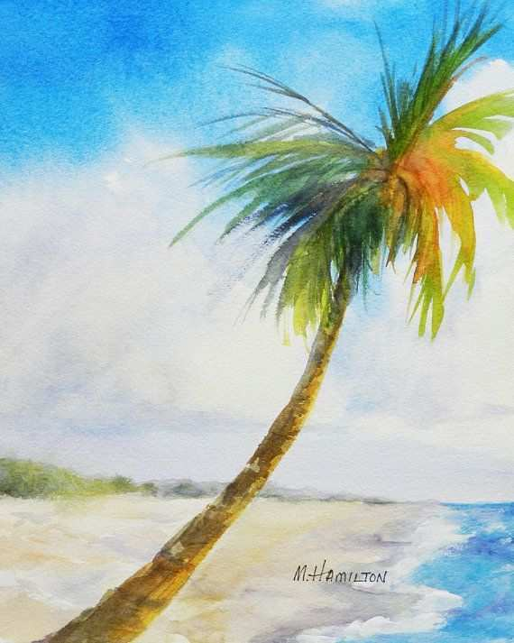 570x713 Palm Tree Painting New Tropical Watercolor Art Looking Down The
