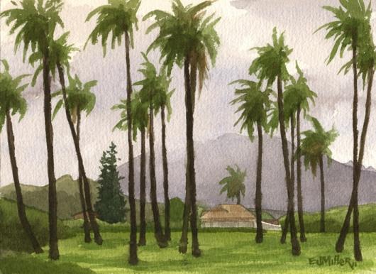 530x386 Plein Air, Through The Coconut Palms