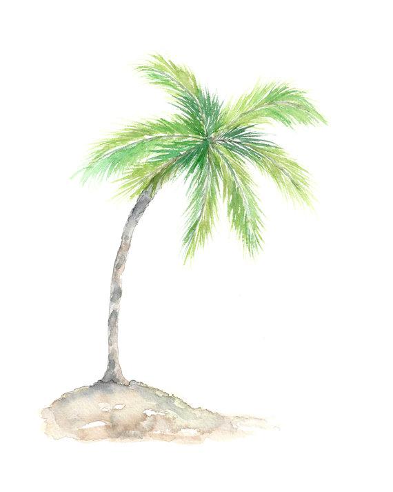 570x713 Watercolor Palm Tree Art Tropical Art Watercolor Tropical