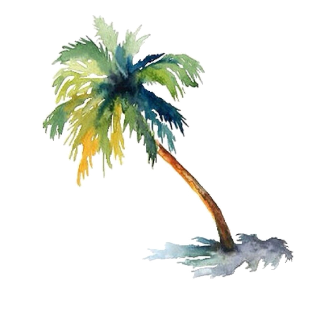 1000x1000 Watercolor Palm Tree By Shannonfraney Redbubble