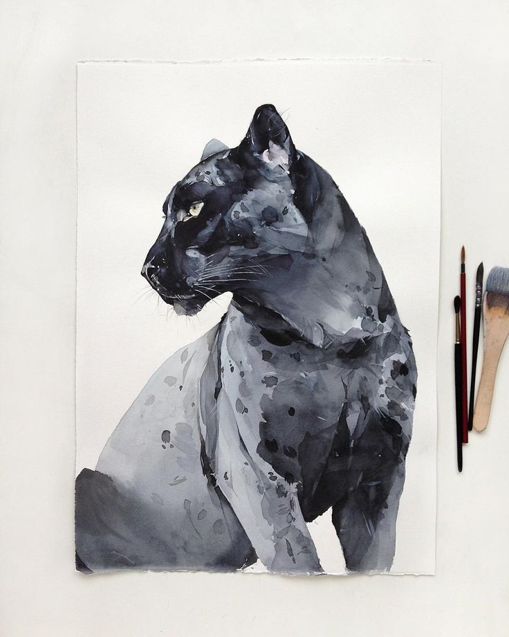 Watercolor Panther