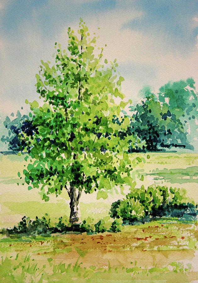 630x900 Shalom Park Watercolor Painting By Linda Eades Blackburn