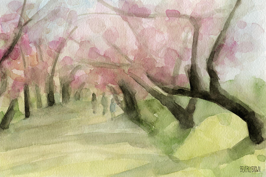 900x600 Watercolor Painting Of Cherry Blossom Trees In Central Park Nyc