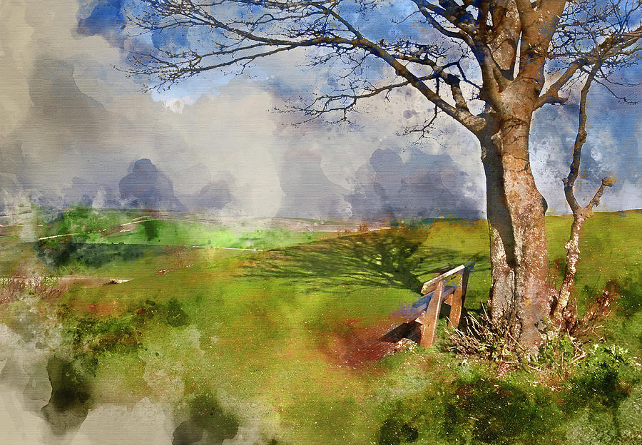 900x624 Watercolor Painting Of Park Bench And Tree Overlooking Beautiful