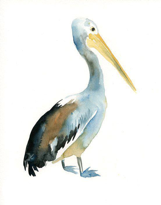 553x704 Pelican Original Watercolor Painting 8x10inch (Vertical