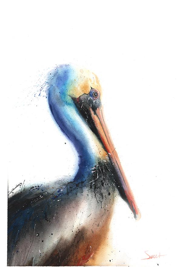 600x900 Pelican Watercolor Print Watercolor Animal Paintings