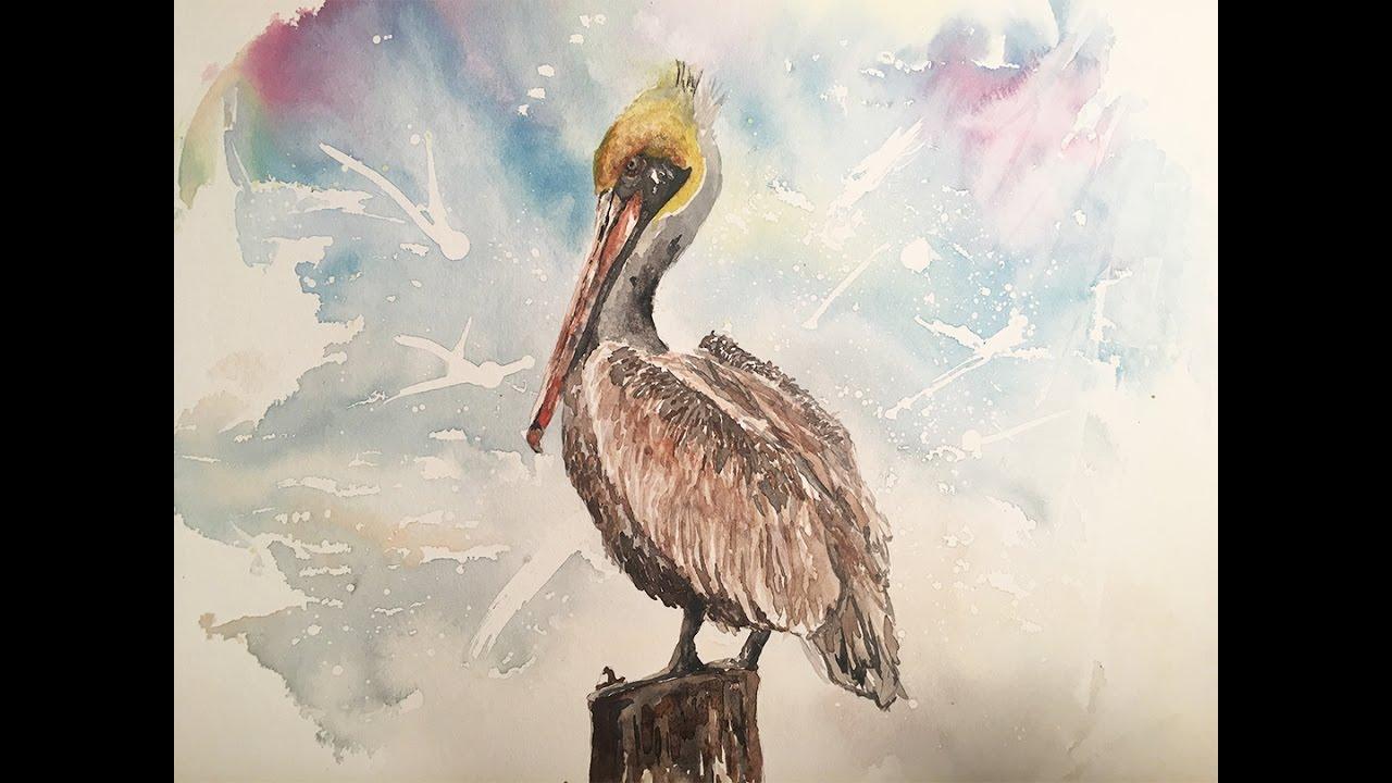 1280x720 Pelican In Watercolor