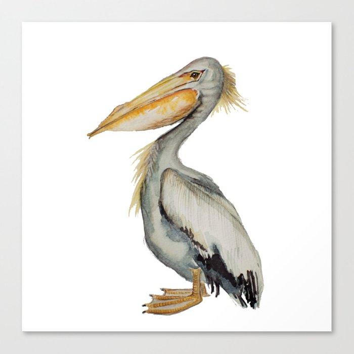 700x700 Watercolor Pelican Canvas Print By Craftberrybush Society6