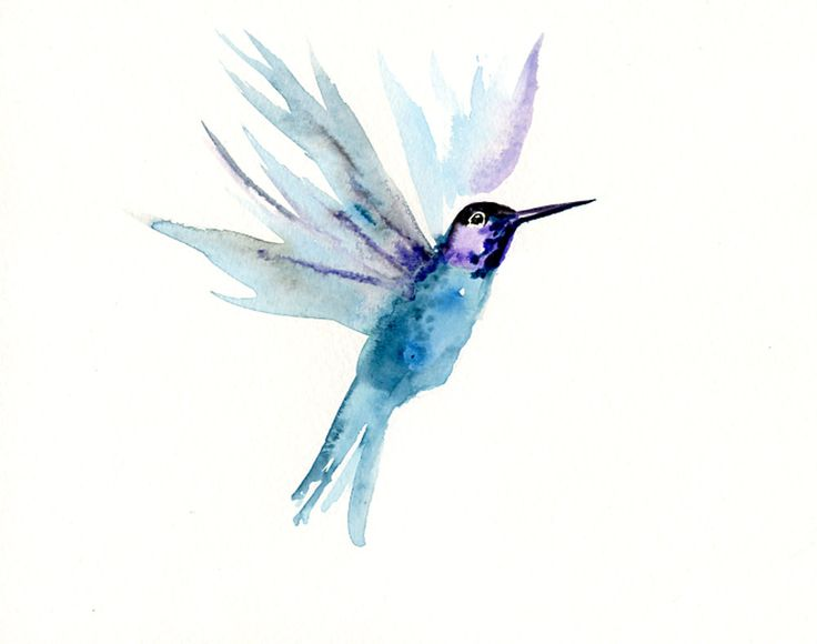 Watercolor Pictures Of Hummingbirds At Getdrawingscom Free For