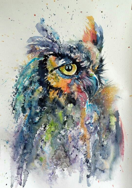 541x770 Owl Watercolor Watercolors Owl Watercolor, Owl And