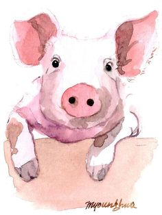 Watercolor Pig