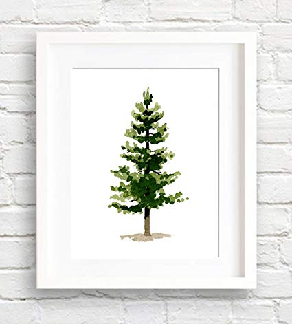 425x471 Pine Tree Watercolor Art Print By Artist Dj Rogers