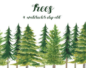340x270 Watercolor Pine Tree Etsy