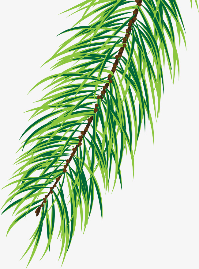 650x877 Small Fresh Green Pine, Brown Branches, Watercolor, Green Plants