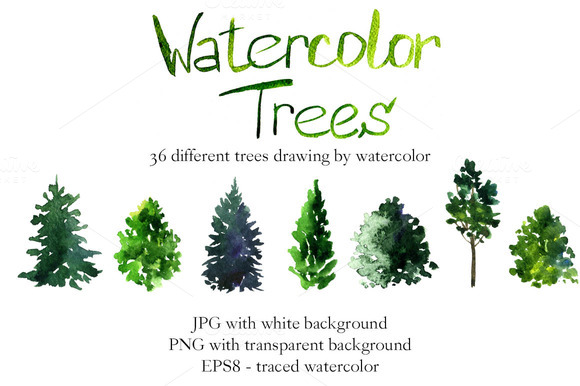 580x386 Pine Tree Clipart Many Tree