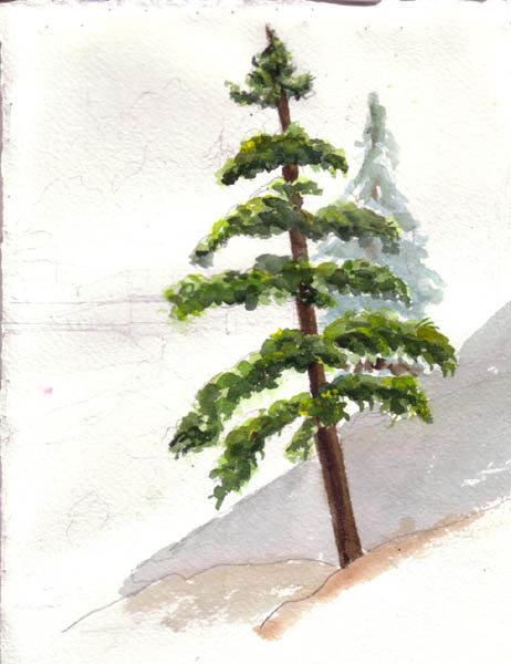 462x600 Help Needed Painting A Foreground Pine Tree