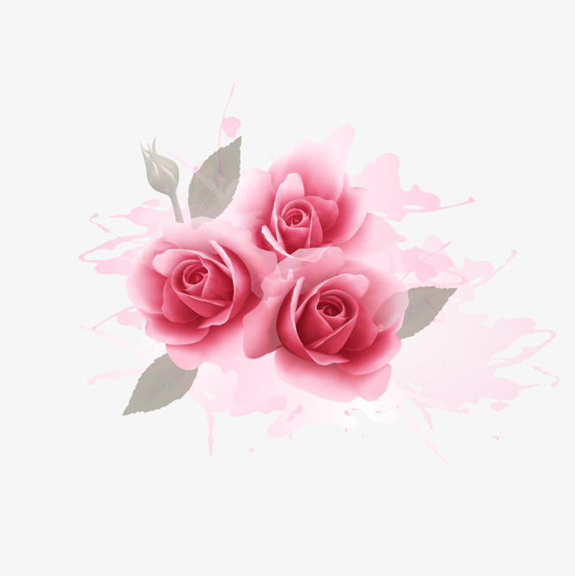 650x651 Romantic Pink Roses Watercolor Background, Watercolor Vector, Pink