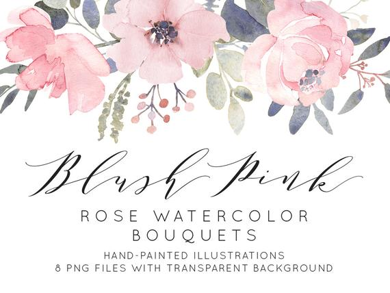 570x428 Blush Pink Roses Watercolor Clipart Dusty Pink Flowers Etsy