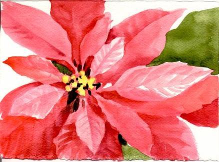 438x324 Painting Poinsettias