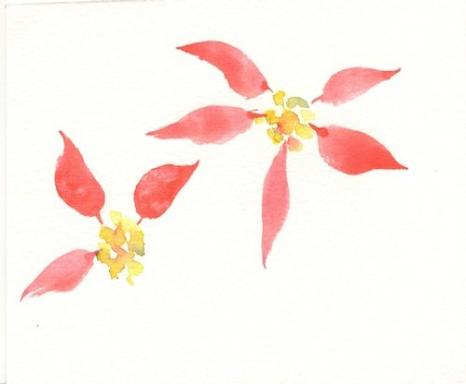 466x384 Painting Poinsettias Watercolor Tips By Susie Short