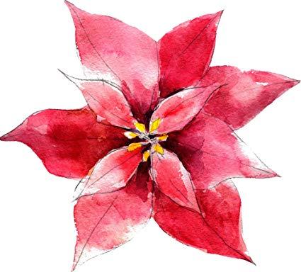 425x384 Pretty Beautiful Artistic Red Watercolor Poinsettia Cartoon Vinyl