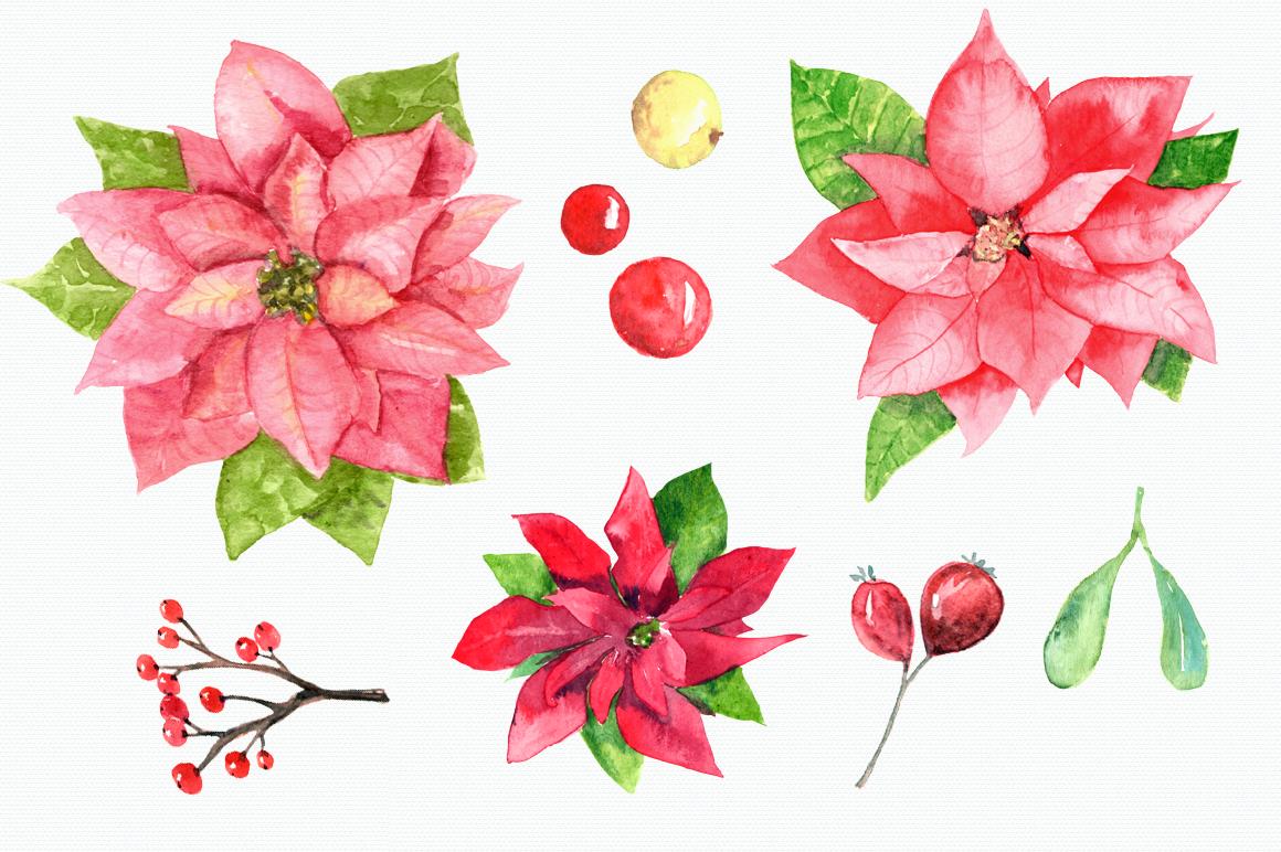 1160x772 Watercolor Poinsettia Clip Art Set