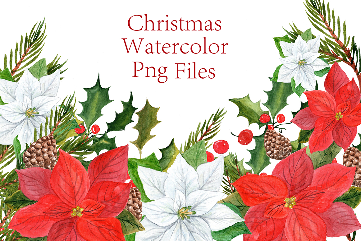 1162x775 Watercolor Poinsettias Clipart