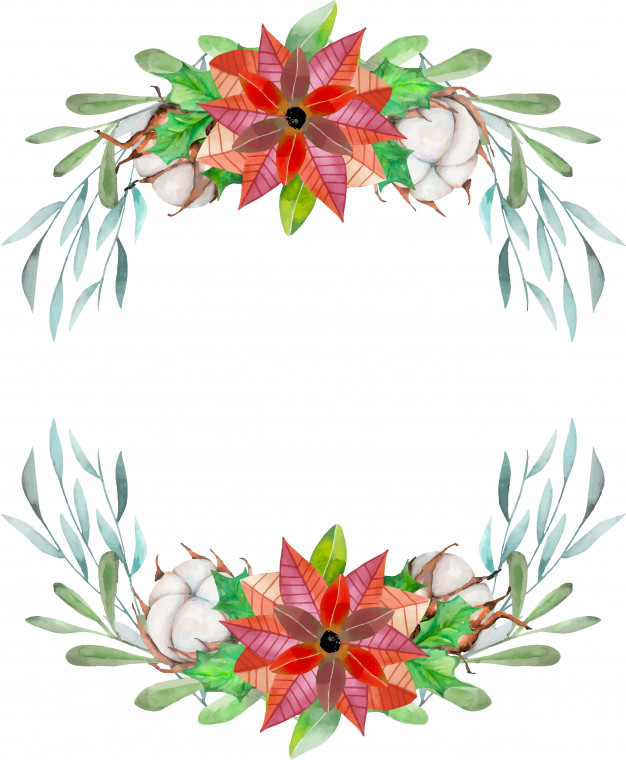 626x760 Watercolor Poinsettia And Cotton Flowers Vector Premium Download