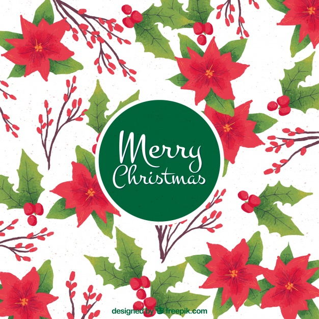 626x626 Watercolor Poinsettia Background Vector Free Download