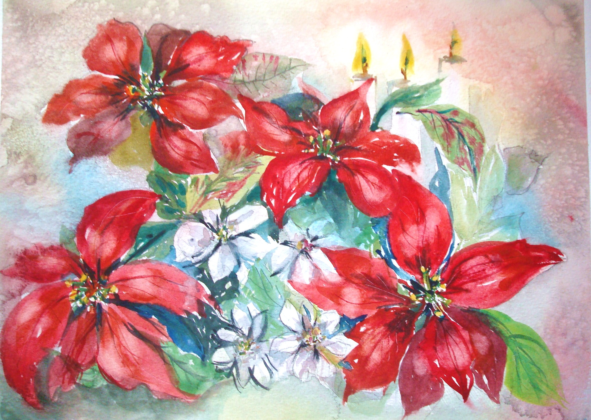 2361x1680 How To Paint Red Poinsettias In Watercolor (With Pictures)