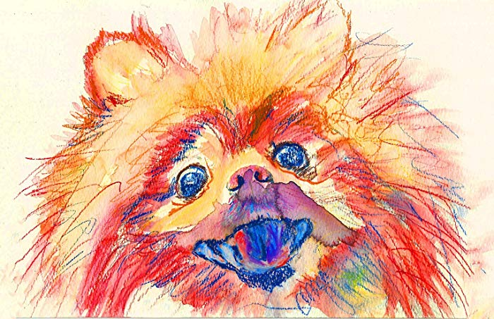 700x453 Pomeranian Pop Art, Dog Nursery Art, Pomeranian Dog