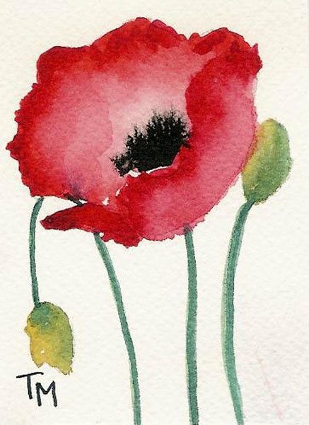 437x600 Aceo Poppy Series