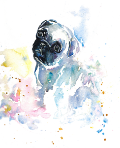 244x300 Pug Puppy In Watercolor By Handandhartdesigns Inktale