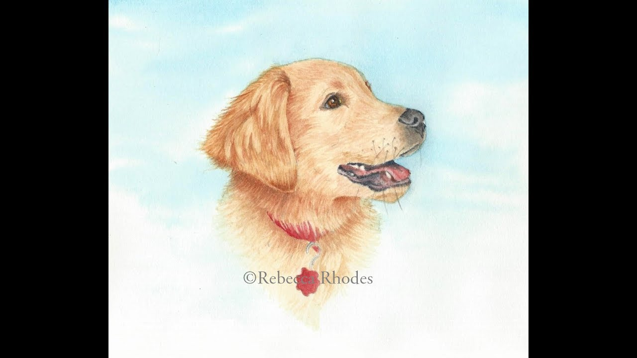 1280x720 How To Paint A Realistic Golden Retriever Puppy In Watercolor