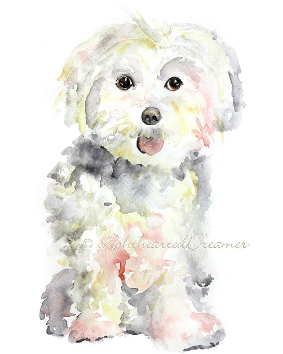 570x713 Maltese Painting, Dog Print, Maltese, Puppy Print, Kids Wall Art