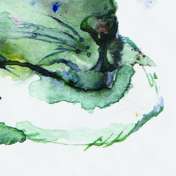 570x570 Green Watercolor Rat Baby Rat Painted Baby Rat On Canvas Rats