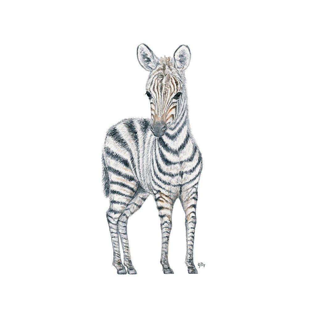 1024x1024 Safari Baby Animal Prints Set Of 3