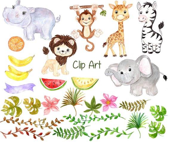 570x475 Watercolor Safari Clipart Safari Animals Clipart Etsy