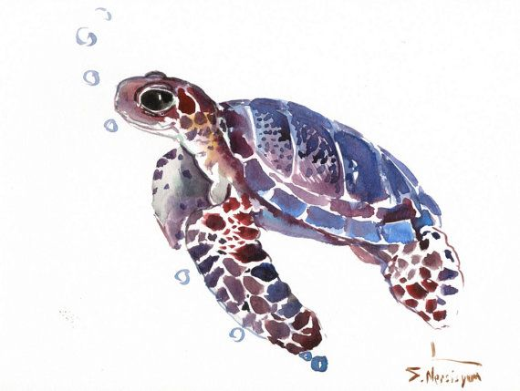 570x429 Sea Turtle, Original Watercolor Painting, 9 X 12 In, Sea Animal