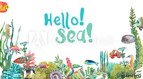 500x277 Watercolor Sea Life, Seaweed, Shell, Fish, Sea Horse, Beautiful