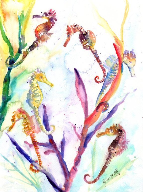 570x765 Seahorse Painting Watercolor Sea Horse Sea Life Watercolor Etsy
